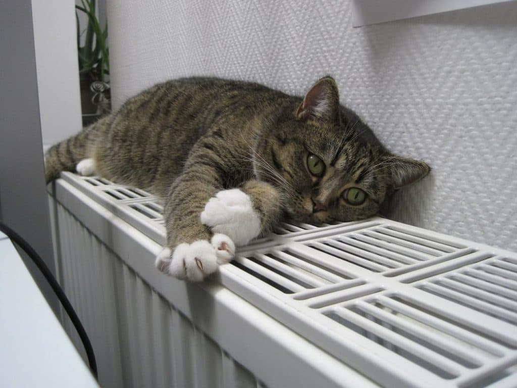 【ストーブ・ヒーター】暖房器具の買い替えと処分方法